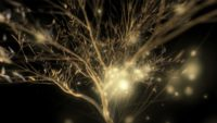 Gold_Abstract_Pattern_Golden_Tree_Video_Footage_Animated_motion_background_vj_loop_Layer_317