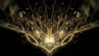 Gold_Abstract_Pattern_Golden_Tree_Video_Footage_Animated_motion_background_vj_loop_Layer_320